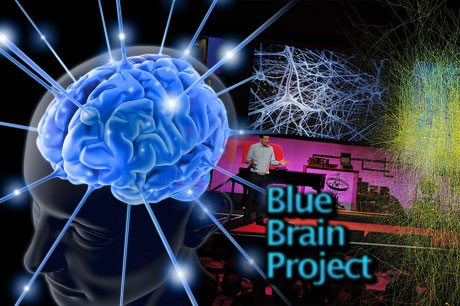 blue brain project The neocortical microcircuit collaboration portal this portal provides an online public resource of the blue brain project's first release of a digital reconstruction of the microcircuitry of juvenile rat somatosensory cortex, access to experimental data sets used in the reconstruction, and the resulting models.